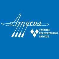 Amycus